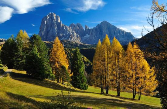 golden-autumn-south-tyrol-01